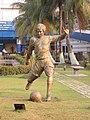 Salt Lake Stadium, Vivekananda Yuba Bharati Krirangan (VYBK)- Kolkata - IRCTC 2017 (35).jpg