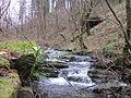 Saltos de agua en el arroyo Goltzibar.JPG