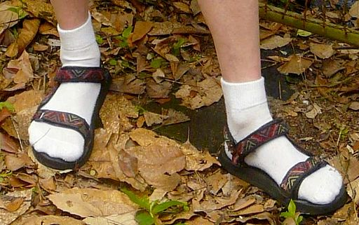 Sandals Worn wth White Ankle Socks