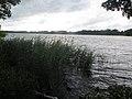 Sankelmarker See (27 Juli 2017) HJL03.jpg
