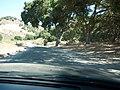 Santa Barbara-Santa Maria-Goleta, CA, CA, USA - panoramio - Thomas Camargo (2).jpg