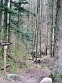 Schwäbisch-Fränkischer Wald, Hohler Stein, Wanderweg - panoramio.jpg