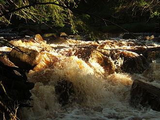 Schwarzwasser (Mulde) - Image: Schwarzwasser mulde wasser