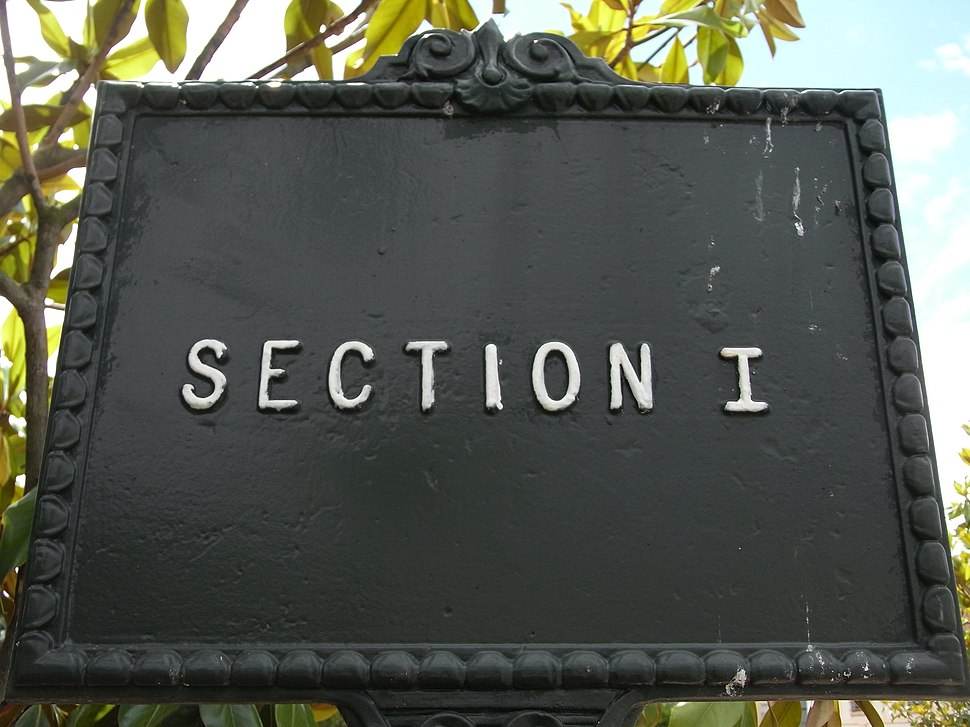 SectionI