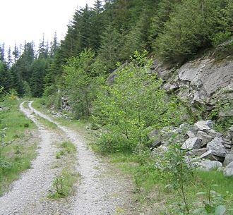 Single track (mountain biking) - An example of doubletrack.