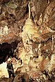 Shatter Cave, Stoke St Michael ,Som - geograph.org.uk - 1195179.jpg