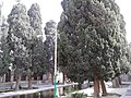 Shazde ibrahim tomb in Kashan - Iran 2.jpg