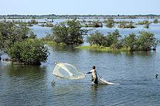 Shrimp fisherman.jpg