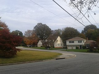 Hollindale, Virginia Unincorporated community in Virginia, United States