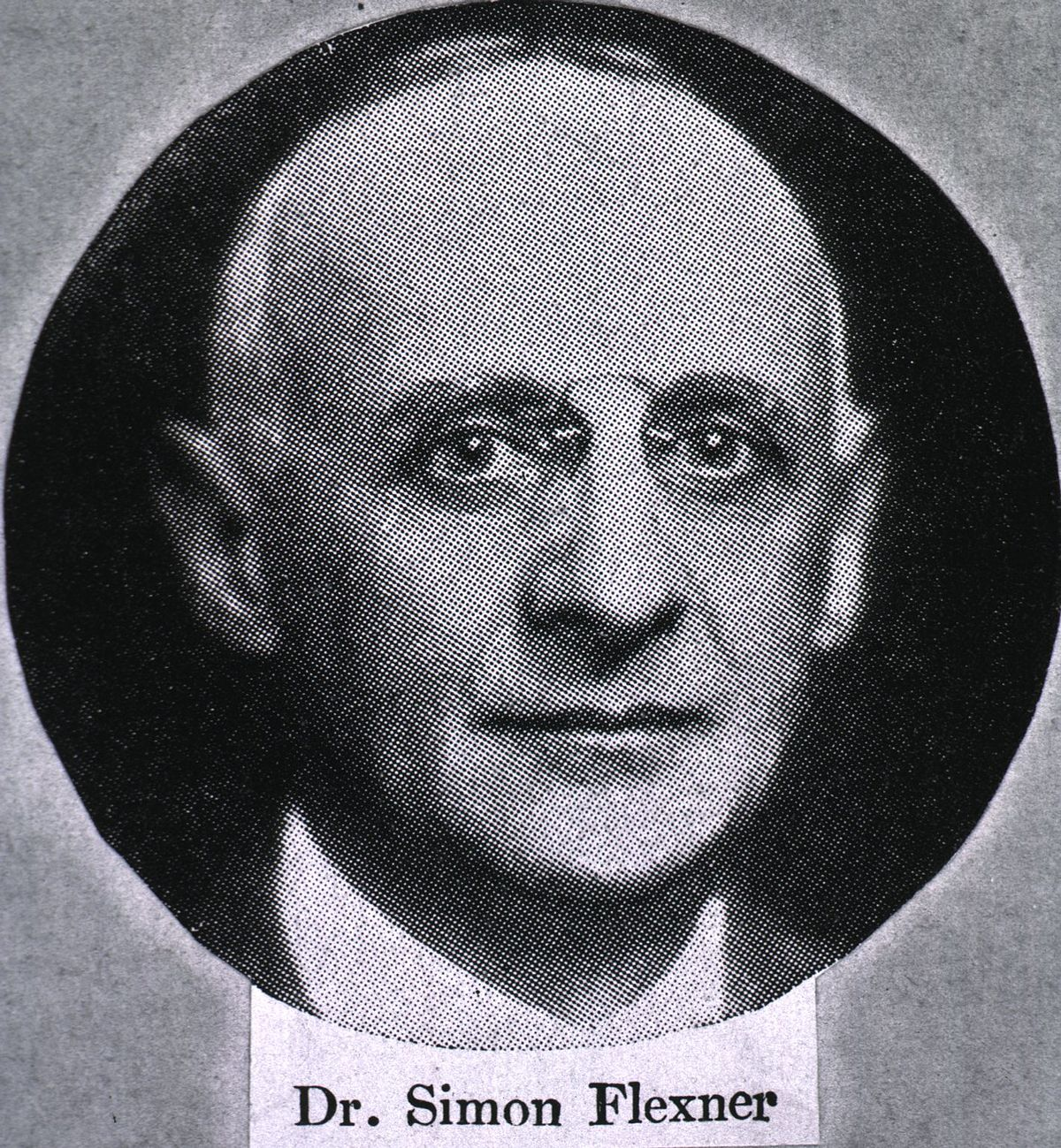 the flexner report The report, plus flexner's vigorous personal efforts for reform, resulted in the closing of about 80% of the then-existent medical schools and the development of high standards for medical training.