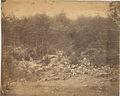 Slaughter Pen - Gettysburg. (3110011789).jpg