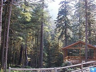 Sled Dog Discovery & Musher's Camp 14.jpg