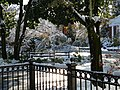 Snowstorm New Jersey October 2011 Number 6.jpg