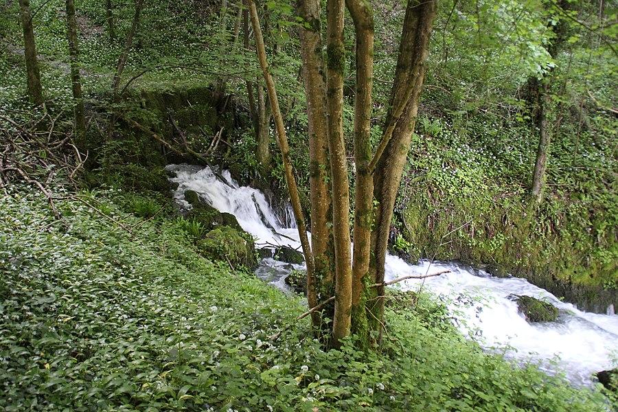 The Source Arcier near Vaire-Arcier, France