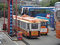 Southern Vectis 609 M712 LJT and 611 R851 LDF rears.JPG