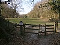 Southern entrance to Ferny Crofts, New Forest - geograph.org.uk - 390887.jpg