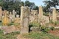 Spomenici na seoskom groblju u Nevadama (43).jpg