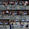 Sports - Boxing 1.jpg