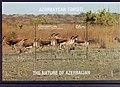 Stamp of Azerbaijan - 2017 - Colnect 759967 - Nature of Azerbaijan III - Fauna.jpeg