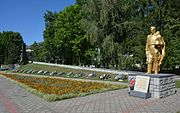 Stara Vyzhva Memorial Complex of WW2 Warriors and Partisans 01(YDS 5528).jpg