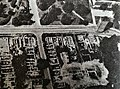 Stare Miasto Elblag, archeo 1987 (3).jpg