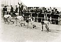 Start of the final heat of the 200 meter run at the 1904 Olympics.jpg