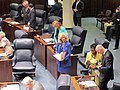 State Senator Maria Sachs, center, debating a bill while Governor Rick Scott, lower right, meets with Senator Arthenia Joyner.jpg