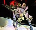 Stegosaurus Stenops - Natural History Museum, London - Joy of Museums.jpg