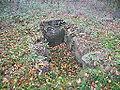 Steinkiste auf dem Giersfelder Gräberfeld.JPG