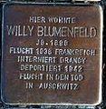 StolpersteinMagdeburgBlumenfeldWilly.jpg