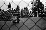 Strajk sierpniowy w Stoczni Gdańskiej im. Lenina 31.jpg