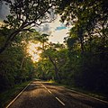 Street with sunset .jpg