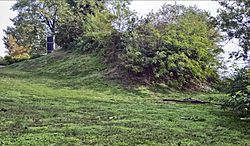 Sugar Loaf Mound at 4420 Ohio in St Louis MO 21.jpg