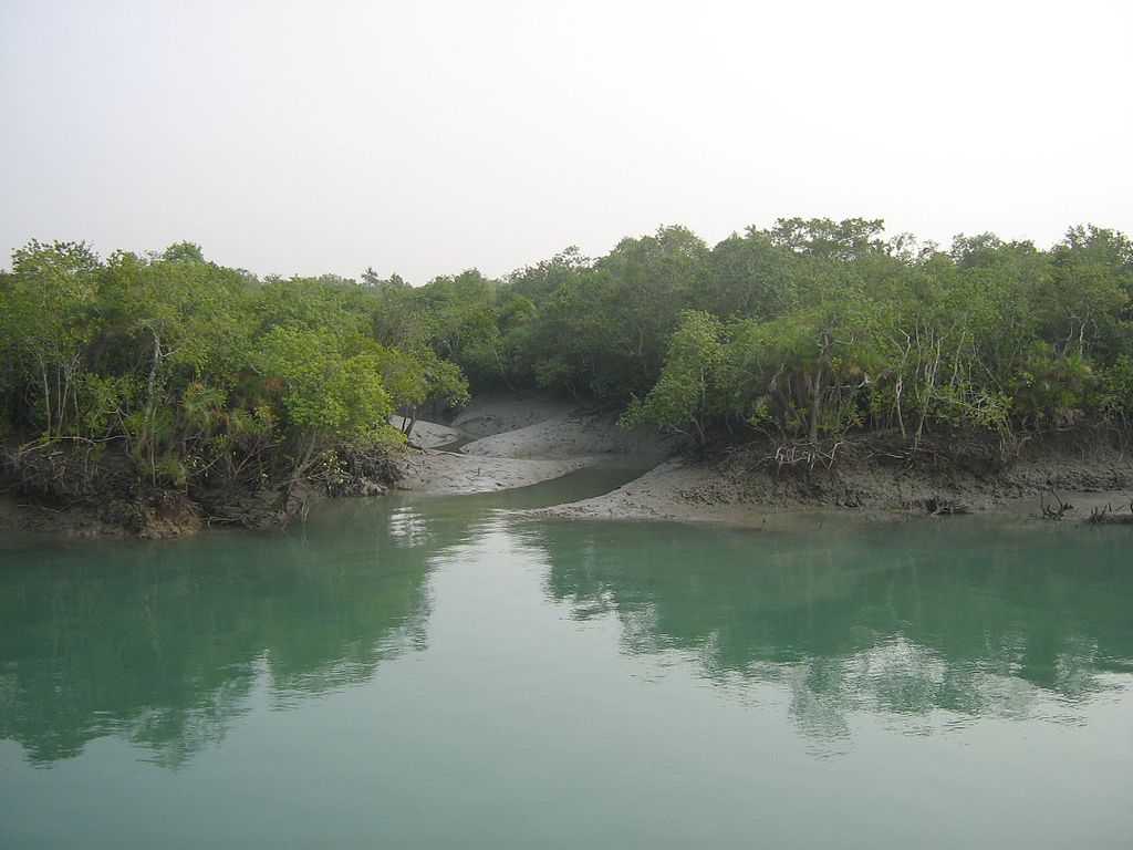 sundarban history Sundarban is the largest mangrove forest in the world this forest is situated in the ganges and brahmaputra estuarine and extends across west bengal of india.