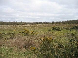Syderstone Common