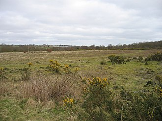 Syderstone Common - Image: Syderstone Common geograph.org.uk 388033