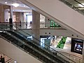 TW 台灣 Taiwan 台北 Taipei City 101 shopping mall August 2019 SSG 18.jpg