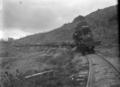Taupo Totara Timber number 9 steam locomotive towing laden logging wagons ATLIB 292947.png