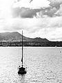 Taupo Yachts (6907619245).jpg