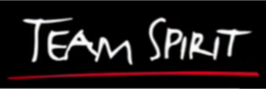 Team Spirit logo.png