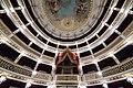 Teatro Piccinni - Bari - Pelco reale.jpg
