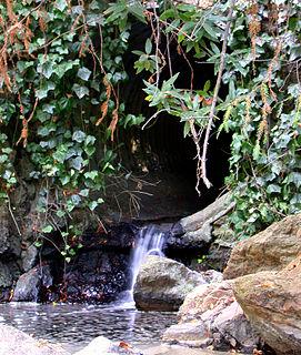 Temescal Creek (Northern California)