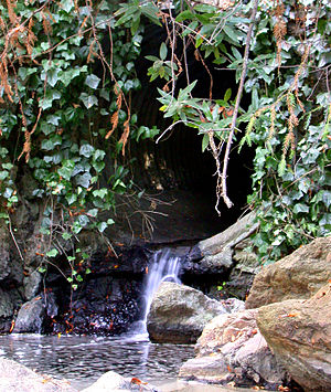 Temescal Creek (Northern California) - Temescal Creek as it comes aboveground at Temescal Regional Park