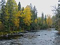 Temperance River (4977360776).jpg