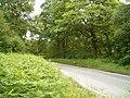 The B845 in Glen Nant - geograph.org.uk - 200297.jpg