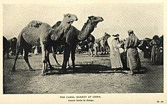 The Camel Market at Gizeh. (1911) - TIMEA.jpg