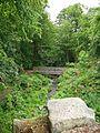 The Ravine, Roundhay Park (4704598446).jpg