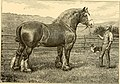 The breeds of live stock, and the principles of heredity (1887) (14594418610).jpg