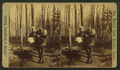 The forest pioneer, from Robert N. Dennis collection of stereoscopic views.png