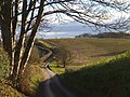 The road to Bromesberrow - geograph.org.uk - 1088661.jpg